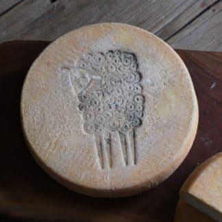 Whole wheel of Prairie Tomme, Green Dirt Farm's 100% Sheep Milk Cheese.